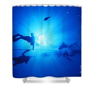 Diver On Mahi Wreck Shower Curtain