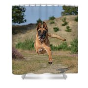 Dog Leaping Shower Curtain
