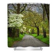 Dogwood Trail, Smoky Mountain, Tennessee Shower Curtain