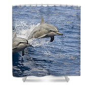 Dolphins Leaping Shower Curtain by Dave Fleetham - Printscapes