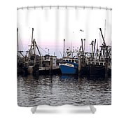 Dragger Painting Shower Curtain