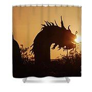 Dragon At Dawn Shower Curtain