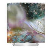 Dragon At The Ego Gate Shower Curtain