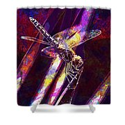 Dragonfly Insect Close  Shower Curtain