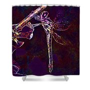 Dragonfly Insect Winged Insect  Shower Curtain