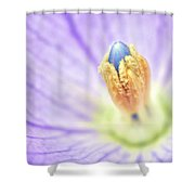 Dream Shower Curtain by Mitch Cat
