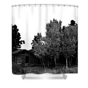 Dreaming In Monochrome Shower Curtain