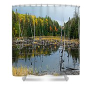 Drowned Trees Shower Curtain