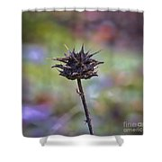 Dry Thistle Shower Curtain