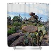 Dusk In The Desert Shower Curtain