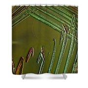 E. Coli In Culture Dish, Macro Image Shower Curtain