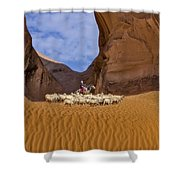 Ear Of The Wind Shower Curtain