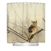 Early Plum Blossoms Shower Curtain