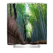 Earth Moments Gallery I Shower Curtain