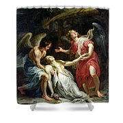 Ecstasy Of Mary Magdalene Shower Curtain