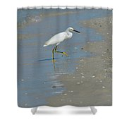 Egret Walking Up The Beach Shower Curtain
