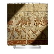 Egyptian Relief Shower Curtain