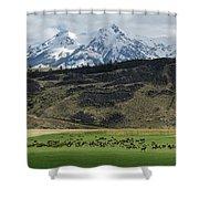 Elk Herd Shower Curtain
