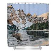 Elk In Moraine Lake Shower Curtain