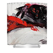 Embed Shower Curtain