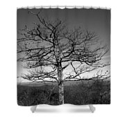 Embrace The Sky Shower Curtain