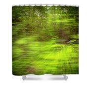 Enchanted Forest 4 Shower Curtain