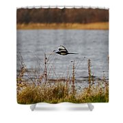 Eurasian Magpie Shower Curtain