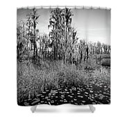 Faces Of The Swamp, No. 7 Shower Curtain
