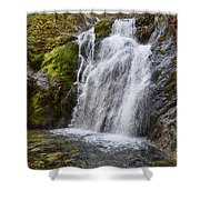 Faery Falls Shower Curtain