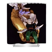 Faery Siblings Shower Curtain
