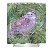 Fall Sparrow Shower Curtain