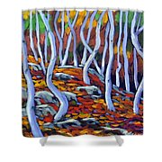 Fantaisie No 6 Shower Curtain