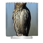 Female House Finch Shower Curtain