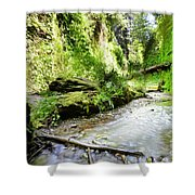 Fern Canyon, Redwood National Park Shower Curtain