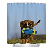Fetching Boxer Puppy Shower Curtain