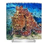 Fiji, Day Octopus Shower Curtain