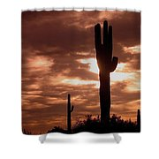 Film Homage Orson Welles Saguaro Cacti The Other Side Of The Wind Carefree Arizona 2004 Shower Curtain