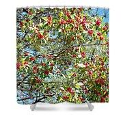 Firethorn Tree Shower Curtain