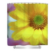 Floral Art Cxii Shower Curtain