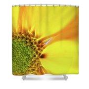 Floral Art Cxiii Shower Curtain