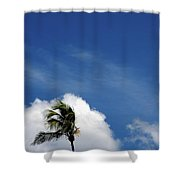Florida Clouds Shower Curtain