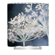Flowering Dill Clusters Shower Curtain