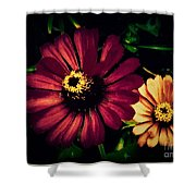 Flowers Lighting Up The Darkness Shower Curtain