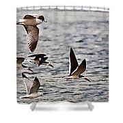 Flying The Inter-coastal - T Shower Curtain
