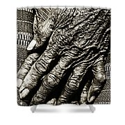 Old Hands Shower Curtain