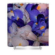 For The Love Of Van Gogh Shower Curtain