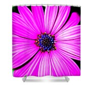 For You ... Shower Curtain