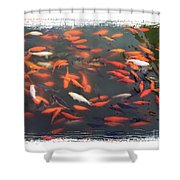 Koi Pond With Framing Shower Curtain