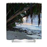 Forest Beach Shower Curtain