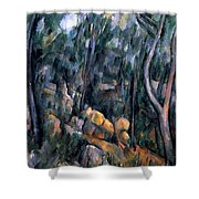 Forest In The Caves Above The Chateau Noir Shower Curtain